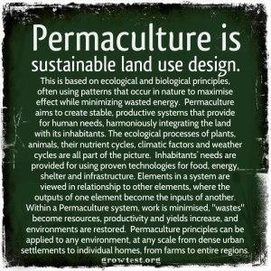 PermacultureIs