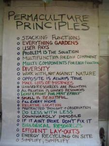 PermaculturePrinciples